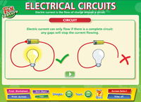 Electrical Circuits Interactive Software